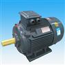 YE3系列超高效率三相异步电动机_东莞环球电机