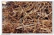 成都金属回收成都稀有金属回收