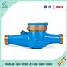 DN32mm Brass Multi Jet Water Meter