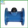 DN250mm Irrigation Water Meter