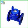 DN80mm Irrigation Water Meter